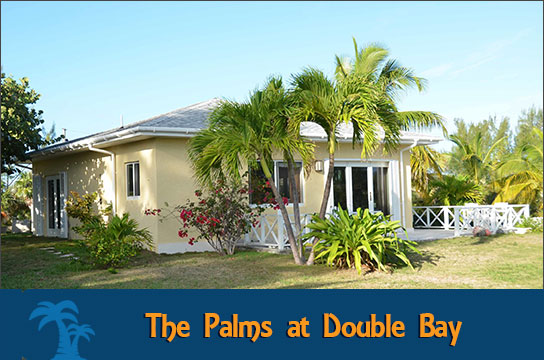 The Palms at Double Bay